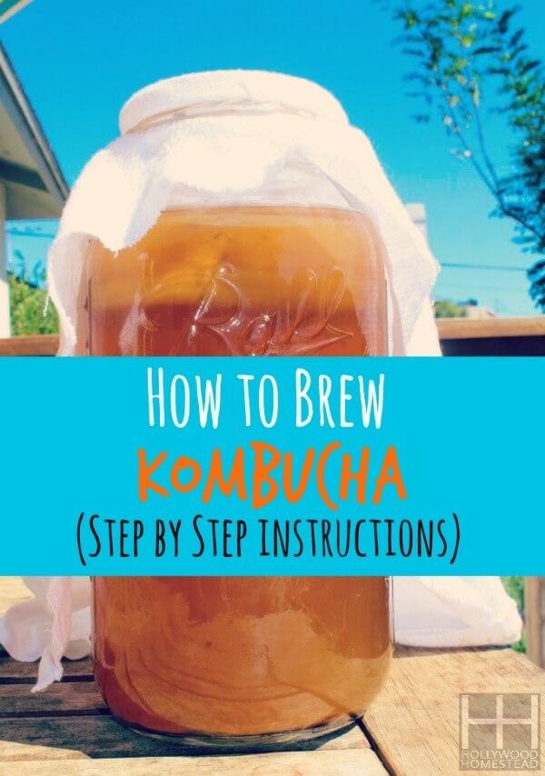 How To Brew Kombucha Wm