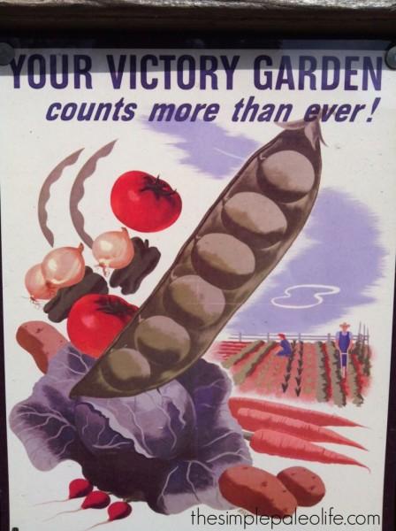 Backyard Gardening Tips for Cheapskates