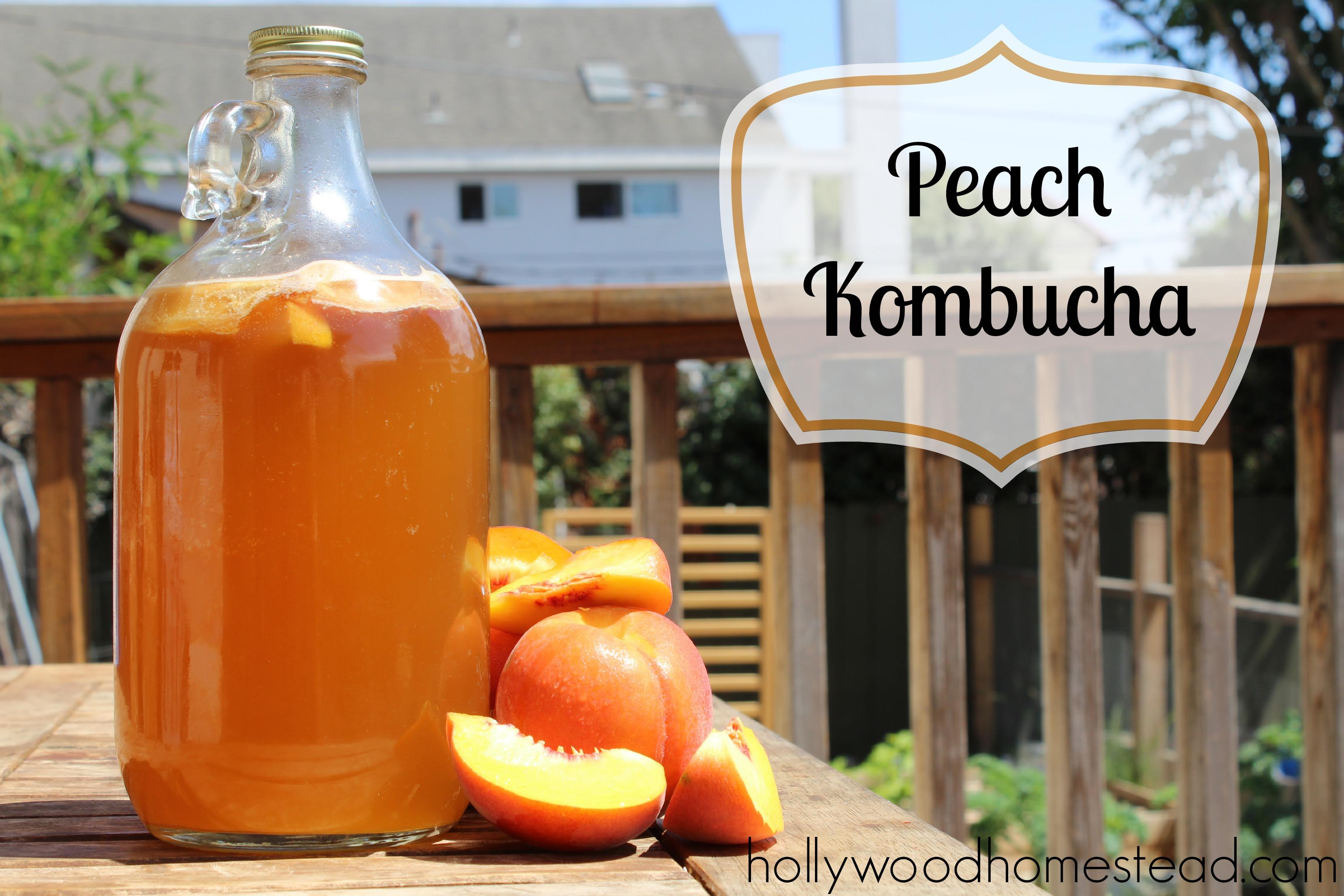 Peach Kombucha Recipe Hollywood Homestead