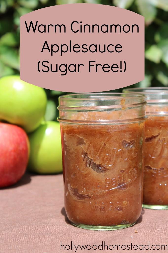sugar free applesauce recipe