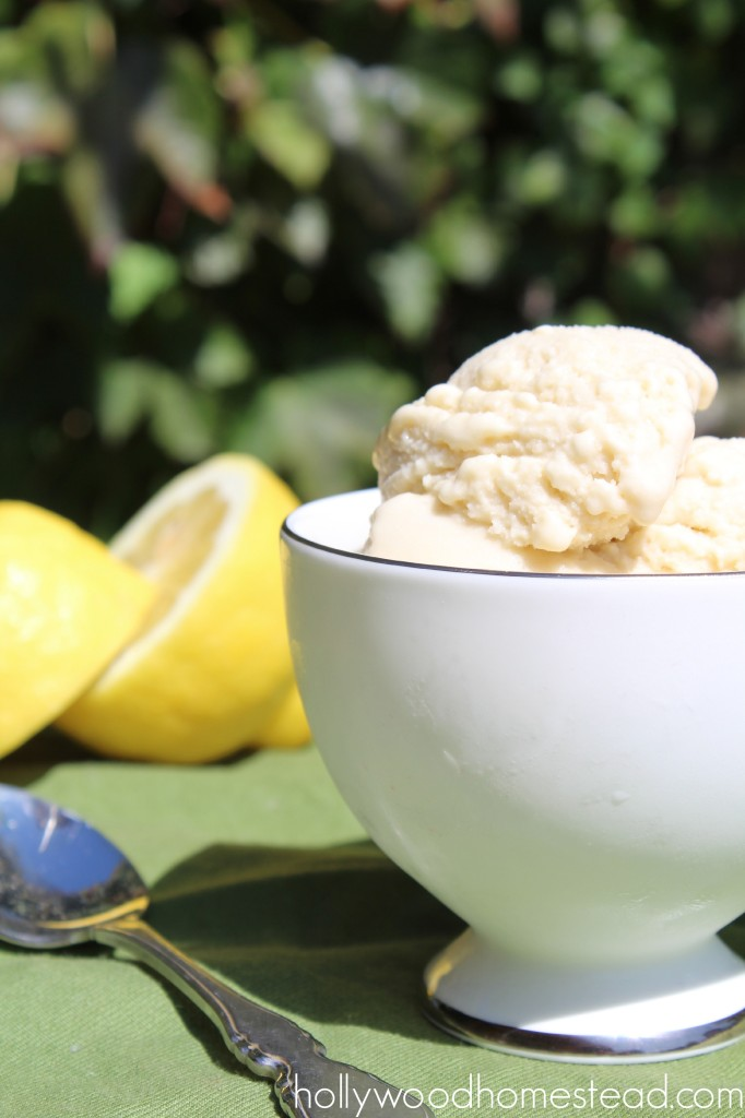 Lemon Ice Cream 2
