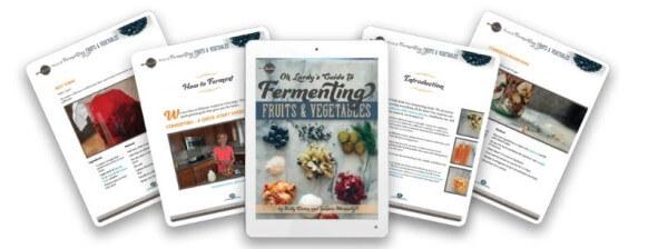 fermenting book