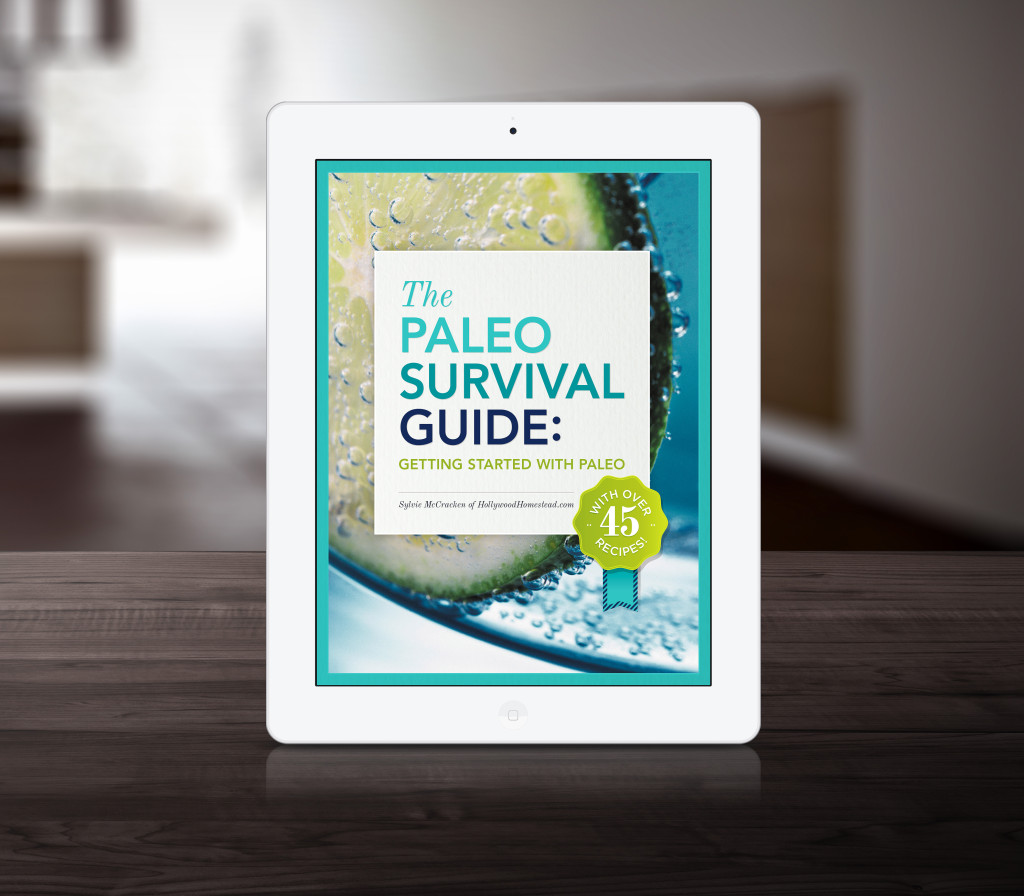 getting started with paleo
