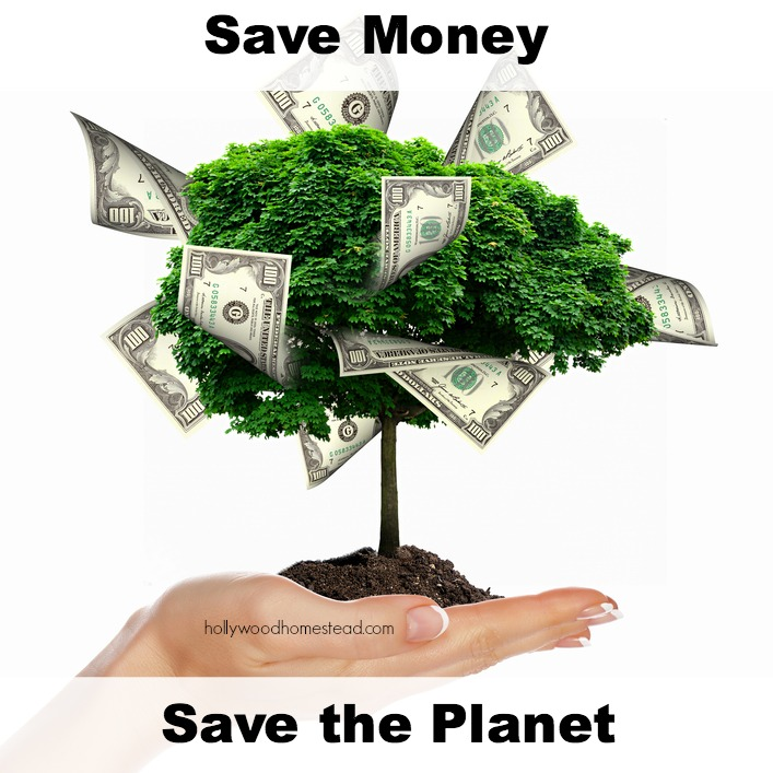 go green save money