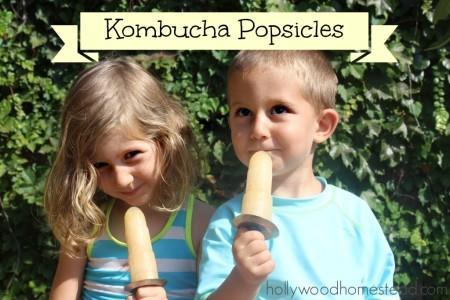 kombucha popsicles