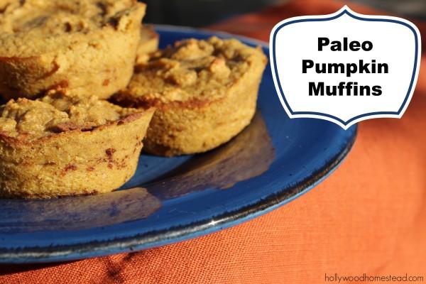 Paleo pumpkin muffins 1