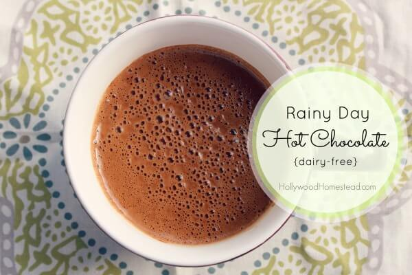 Rainy Day Paleo Hot Chocolate (Dairy Free) - Hollywood Homestead
