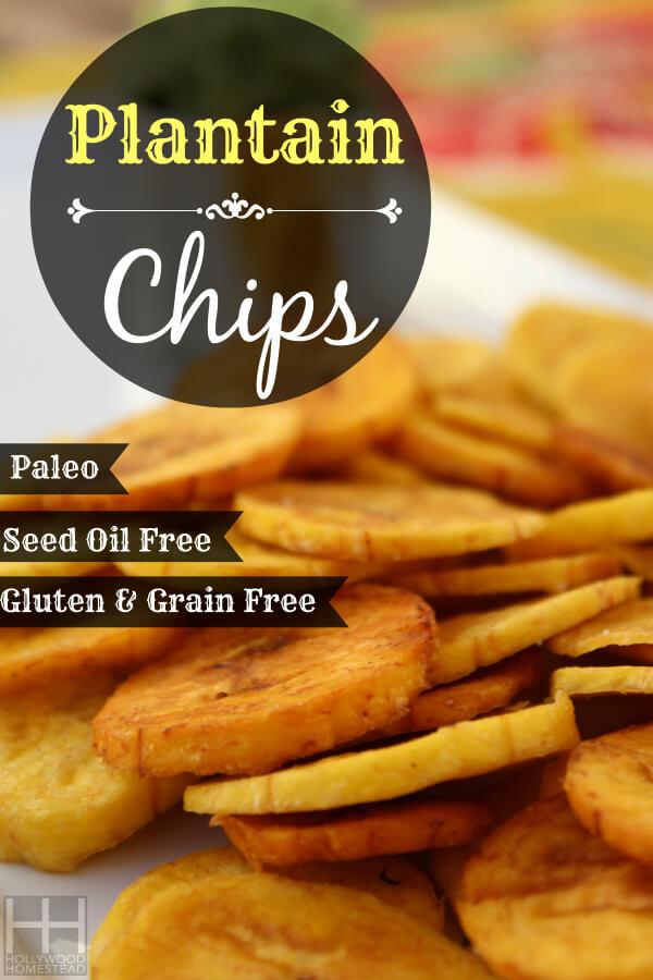 Plantain Chips 600 WM