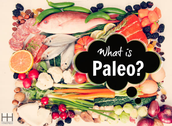What is Paleo WM