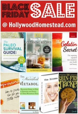 Black Friday Sale - Hollywood Homestead