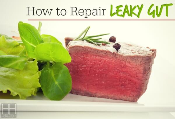 How to Repair Leaky Gut - Hollywood Homestead