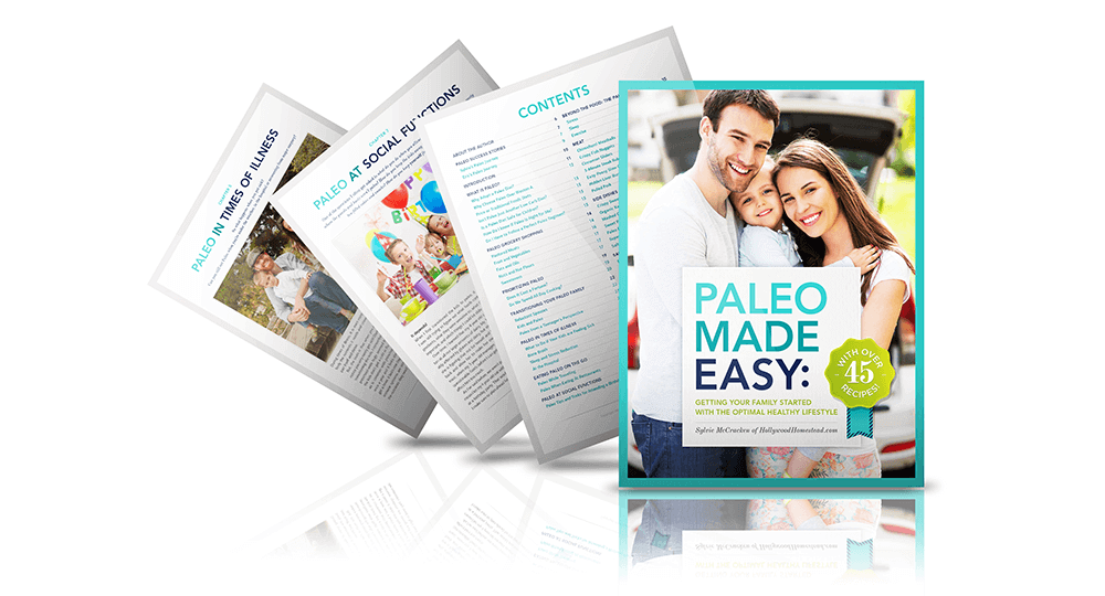 Paleo-Made-Easy-Hero-2