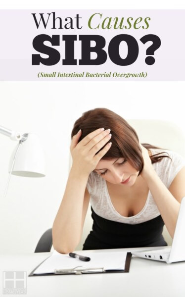 Treating SIBO (Part 3): Causes of SIBO - Hollywood Homestead