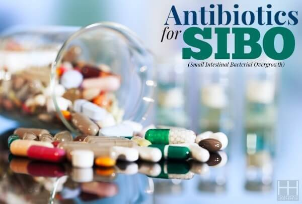 Treating SIBO (Part 7): Antibiotics for SIBO - Hollywood Homestead