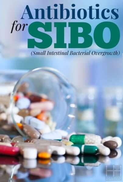 Treating SIBO (Part 7): Antibiotics for SIBO - Hollywood Homestead