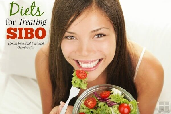 Treating SIBO (Part 9): Diet for SIBO - Hollywood Homestead