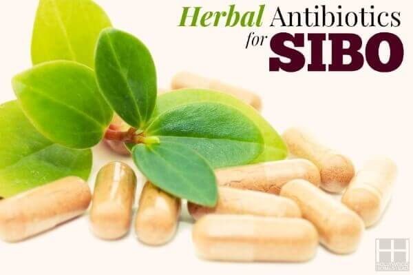Treating SIBO (Part 8): Herbal Antibiotics for SIBO