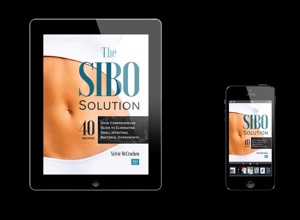 SIBO-v5-pr1 copy