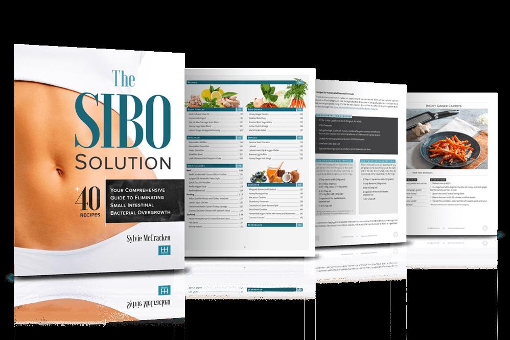 SIBO-v5-pr2 copy