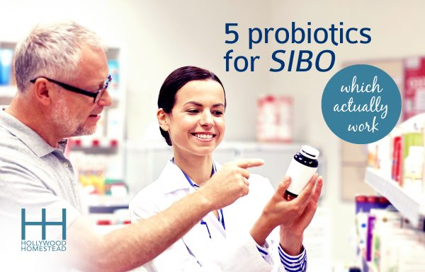 5 Probiotics for SIBO which Actually Work